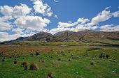 Grasland In einem Remote-Berg-Tal