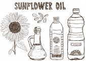 Doodle de aceites de girasol