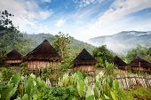 picture of papua new guinea  - A traditional hut in an Indonesian mountain village - JPG