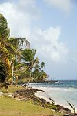 Sally Peaches Beach Sally Peachie Big Corn Island Nicaragua Caribbean Sea