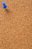 Cork Board With Blue Pin