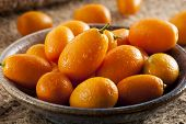 image of kumquat  - Fresh Organic Raw Kumquats Citrus Fruit against a background - JPG