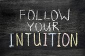 Follow Your Intuition