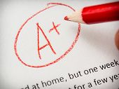 stock photo of grammar  - Grading term paper or school essay a plus - JPG