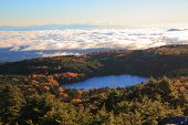 picture of plateau  - Pond in the forest Yachiho plateau Shirakoma pond Nagano Japan - JPG
