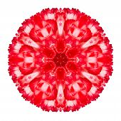 Red Carnation Mandala Flower Kaleidoscopic Isolated On White