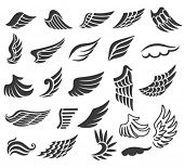Wings. Set of vector design elements.