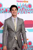 LOS ANGELES - NOV 17:  Darren Criss at the TeenNick Halo Awards at Hollywood Palladium on November 1
