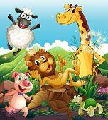 Illustration of the playful animals