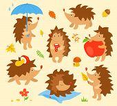 Set of simple cute hedgehogs