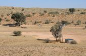 Auchterlonie Waterhole, Kgalagadi Transfrontier Park