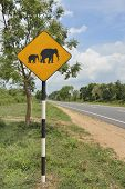 Beware elephants sign on open country road