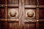 Lion Head Door Knocker With Ring In Its Mouth