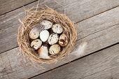 Quail eggs nest over wooden table background