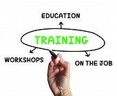 Постер, плакат: Training Diagram Shows Workshops Groundwork And Educating