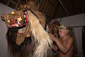 BALI - APRIL 13, 2014: An unidentified master puppeteer prepares the Barong creature to start in a '