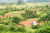 Aerial view of the Vinales Valley in Cuba, a tourist landmark  known worldwide for its beauty and th