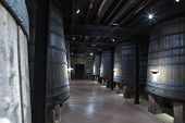 LA RIOJA, SPAIN - SEPT 7 2014 : Rioja wine undergoes the ageing process in oak barrrels.