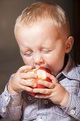 Little Boy Child Kid Eating Apple Fruit At Home