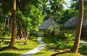 Bungalows and pathway, flowers and trees, vacation background