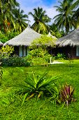 Bungalows and flowers - vacation background