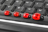 Toy ladybirds on computer keyboard - concept technology background