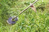 pic of grass-cutter  - Close up shot mowers engine cutting grass and a weed - JPG