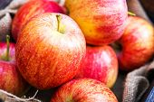 Постер, плакат: Fresh Red Apples Closeup