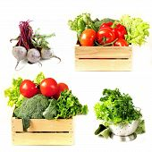 Set vegetables in wooden box, lettuce salad and beetroot on white background