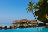 Water cafe and pool - Maldives vacation background