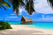 image of kuramathi  - Diving club on a tropical island  - JPG