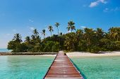 foto of kuramathi  - Jetty and beach at Maldives  - JPG