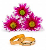 Flowers and wedding rings isolated on white background