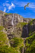 Waterfall in Fjord Sognefjord Norway - nature and travel background