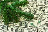 Christmas tree and money - holiday background