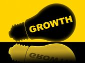 Growth Lightbulb Shows Develop Improve And Lamp
