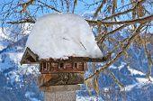Nestbox bird house - nature background