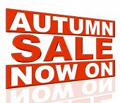 Autumn Sale Indicates At The Moment And Clearance