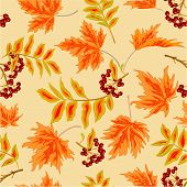 Seamless Texture Rowanberry And Maple Leaves Autumn Vector