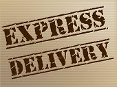 Express Delivery Means High Speed And Action