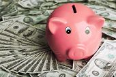 Piggy bank on money background