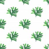 Christmas tree brunches seamless pattern