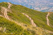 pic of dirt road  - Group of mountain bikeres on a long dirt road - JPG