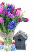 foto of bosoms  - bunch of blue hyacinth and red pink and purple tulip flowers with birdcage and easter eggs isolated on white background - JPG