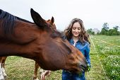 stock photo of feeding horse  - Young beautiful girl feeding a horse at summer time - JPG