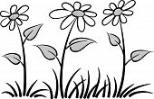 foto of daisy flower  - vector drawing beautiful daisy flower with leaf - JPG