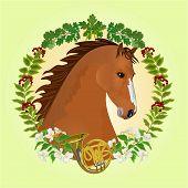 pic of chestnut horse  - Chestnut Horse head of stallion leaves and french horn hunting theme vector illustration - JPG