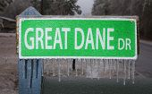picture of great dane  - Sign for Great Dane Road that is covered in ice - JPG