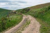 image of dirt road  - Dirt road through wheat fields Pullman Washington - JPG