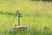 image of buttercup  - Green retro waterpump in a meadow full of yellow buttercup flowers - JPG
